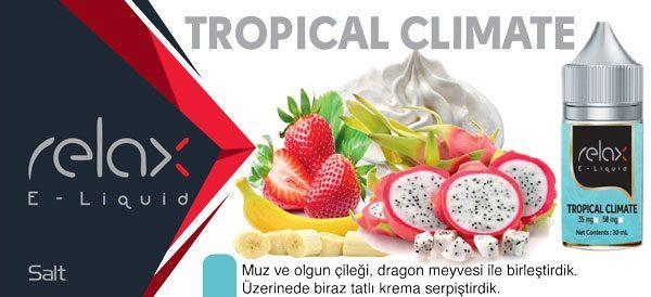 tropical climate salt likit fiyatı